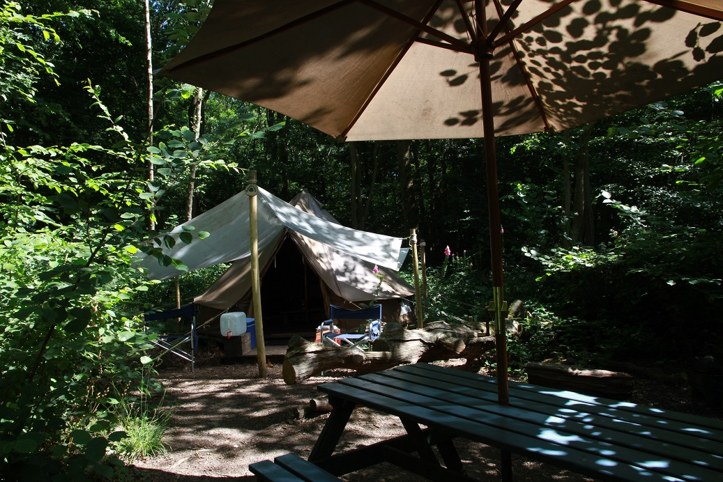 A bell tent at Wild Boar Wood